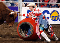 Rodeo clown/barrelman CrAsh Cooper helps a bull rider get out of a tight spot.