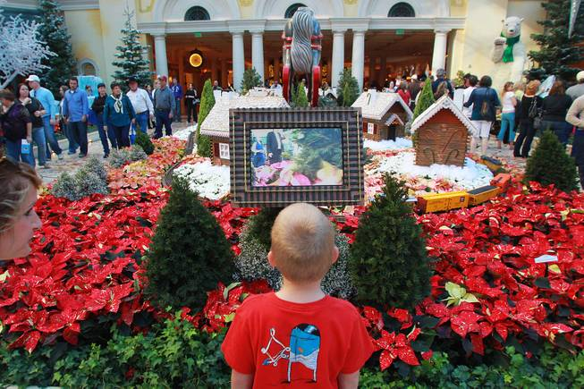 A young boy watches a live video from a toy train in the holiday display at the Bellagio Conservatory & Botanical Garden Friday, Dec. 7, 2012.