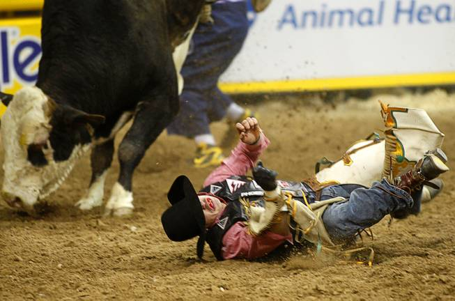 Bull rider Cody Samora of Cortez, Colo. hits the ground after being bucked off his bull during the fourth go-round of the Wrangler National Finals Rodeo at the Thomas & Mack Center Sunday, Dec. 9, 2012. The NFR continues through Saturday.