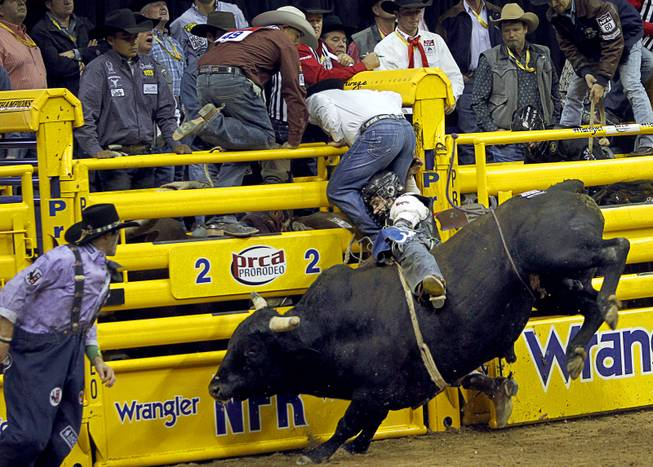 Bull rider Clayton Savage of Casper, Wyo. competes during the fourth go-round of the Wrangler National Finals Rodeo at the Thomas & Mack Center Sunday, Dec. 9, 2012. The NFR continues through Saturday.