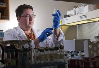 Duane Moser, a microbial and molecular ecologist at the Desert Research Institute, is shown in his lab at DRI Monday, Dec. 10, 2012. Moser is part of a team of researchers that just received a $6.6 million NASA grant to explore life underground.