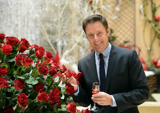 "Chris Harrison, host of ABC's ""The Bachelor,"" unveils the newest variety of red rose called the Palazzo during a ceremony Thursday, Dec. 13, 2012, at Palazzo."