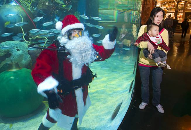 Wendy Lin poses with her son Lucas by the underwater  Santa in the Silverton's 117,000-gallon aquarium Sunday, Dec. 23, 2012. Santa took Christmas present requests from children using an underwater microphone.