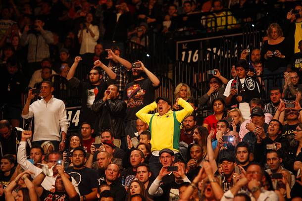 Fans of heavyweight champion Junior Dos Santos cheer at the start of his fight against Cain Velasquez during UFC155 at the MGM Grand Garden Arena Saturday, Dec. 29, 2012. Velasquez reclaimed the belt by unanimous decision.