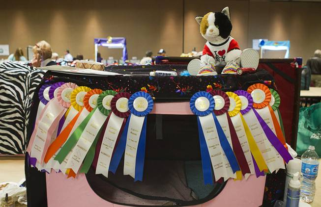 A cat crate is covered with ribbons in a competitor's area during the annual Cat A Lina Cat Club Championship Cat Show at the Riviera Sunday, Dec. 30, 2012.