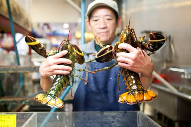 Seafood manager Hung Ung inspects the size of the live lobsters for sale at the International Marketplace located at 5000 S. Decatur in Las Vegas on January 28, 2013.