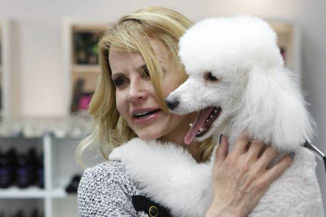 Owner Kelly Petersen gives Mojo, a miniature poodle, a hug at Shaggy Chic, Feb. 13, 2013.