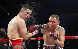 Brandon Rios, left, takes a punch from Mike Alvarado during a super lightweight bout for an interim 140lb. WBO title at the Mandalay Bay Events Center Saturday, March 30, 2013. Alvarado won the fight by unanimous decision. The fight was a rematch to a Oct. 13, 2012 fight  which Rios won.