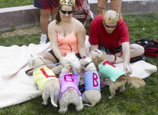 Jer Roberson, left, and Josh James, right, with their dogs, from left: Euro, Bella, Randy and Ulu, at the 2013 Aids Walk held at UNLV, Sunday, April 13, 2013.
