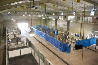 A view of the large indoor animal pen at the Oquendo Center, an educational medical facility, Wednesday April 17, 2013.