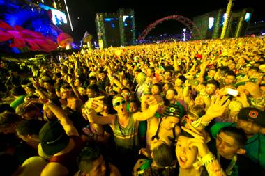 Festival goers listen to Avicii during night 2 of the Electric Daisy Carnival, Saturday June 22, 2013.