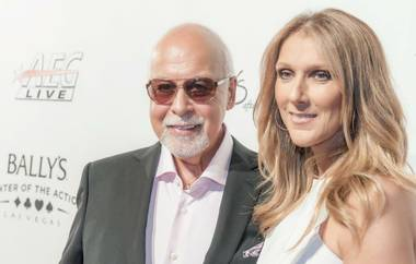 Australian singer-songwriter Daniel Merriweather posted some ugly comments on his Facebook page after Celine Dion's appearance on ...