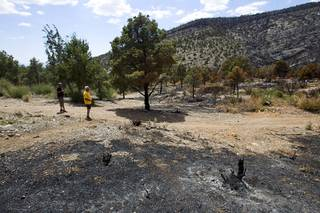 Residents Don Kubinski, left, and Dave Mallory look over the forest behind their homes in Trout Canyon Monday, July 15, 2013. Residents were allowed to return to their homes Sunday.