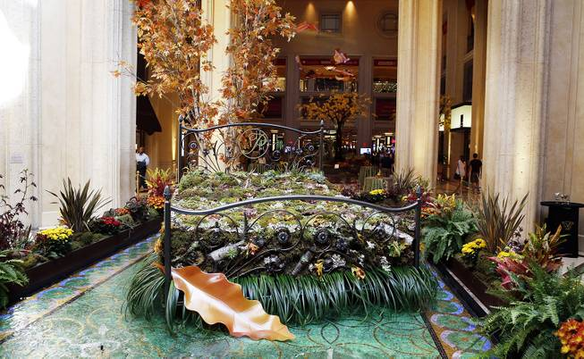 "The new fall-themed display at the Palazzo Waterfall Atrium and Gardens was unveiled on Tuesday, Sept. 24, 2013. The theme was ""Fall Into Eco 360"" and represented Palazzo and Venetian's latest sustainability efforts."