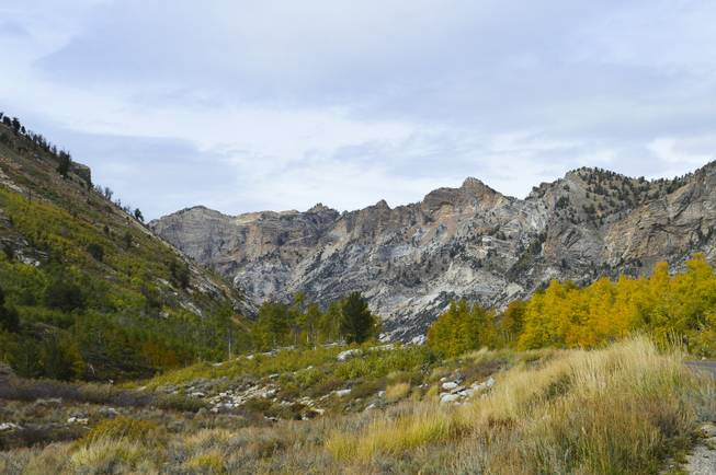 Lamoille Canyon, about 20 miles south of Elko, offers an incredible drive with breath-taking scenery, Sunday, Sept. 29, 2013.