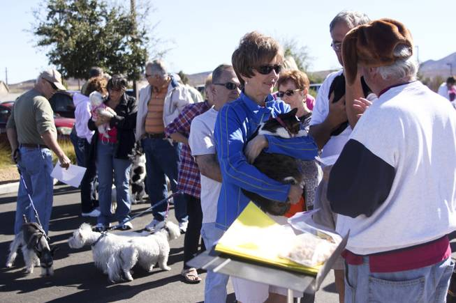 Pet owners wait in line with their cats and dogs during a pet blessing ceremony to celebrate the Feast of St. Francis of Assisi, the Catholic patron saint of animals, at New Song Church in Henderson on Saturday, Oct. 5, 2013. In the U.S., St. Francis of Assisi's feast day is celebrated on Oct. 4.