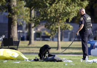 A fire investigator and K-9 dog investigate the scene on the National Mall in Washington, where, according to a fire official, a man set himself on fire Friday, Oct. 4, 2013.  The official said the man was flown by helicopter to a hospital.