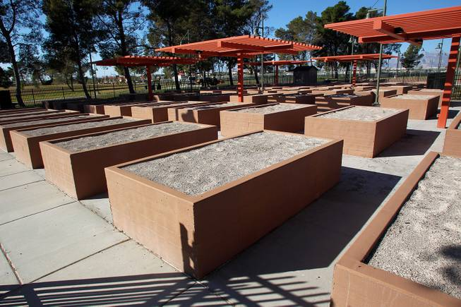 These are some of the 62 raised beds in the community garden at the soon to open Craig Ranch Park in North Las Vegas Tuesday, October 15, 2013,