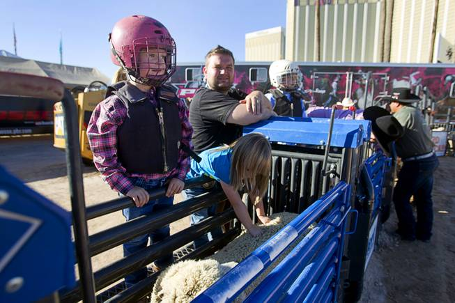 Ainslea Ray Hayes, 4, of Grandbury, Texas waits to compete during a Mutton Bustin' competition at the Tyson Fan Zone & Marketplace at Mandalay Bay Thursday, Oct. 24, 2013. The event was part of the the 2013 Professional Bull Riders Built Ford Tough World Finals.