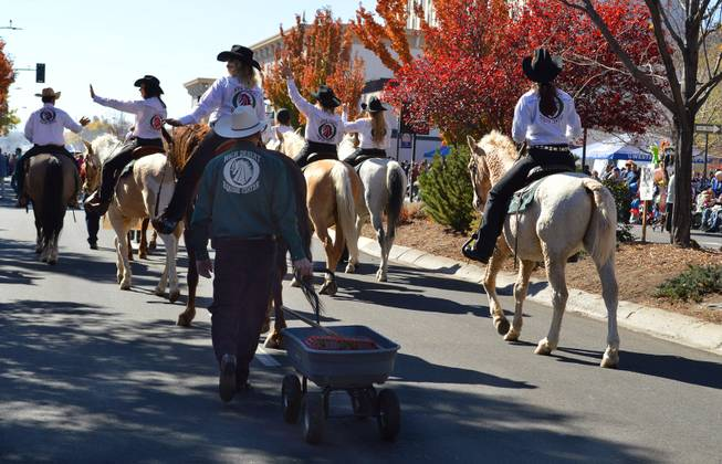 Bill Molloy follows riders of the High Desert Equine Center, which is northeast of Reno, in the Nevada Day parade in Carson City on Oct. 26, 2013.