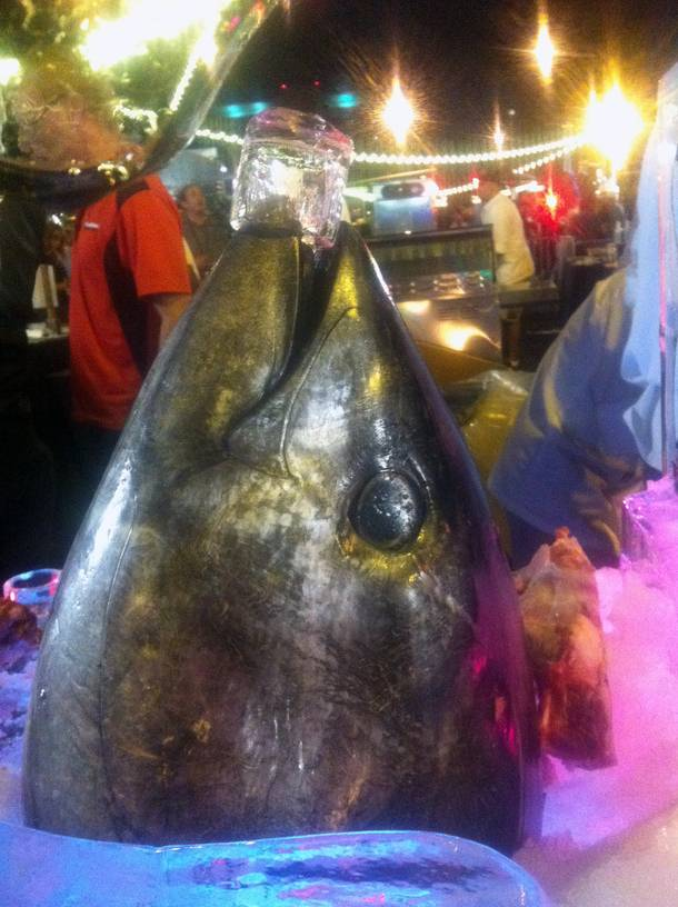 Hey, gorgeous. This 200-pound bluefin tuna stole the show at the Life Is Beautiful kickoff event.