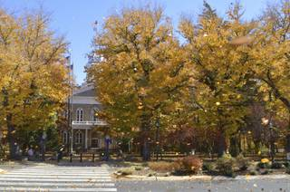 Wind blows leaves in front of the state Capitol in Carson City on Sunday, Oct. 27, 2013.