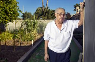 World War II veteran Harvey Johnson, 90, poses in his backyard Sunday, Nov. 10, 2013. Johnson served in a hospital unit in Papua New Guinea and in the Philippines, he said.