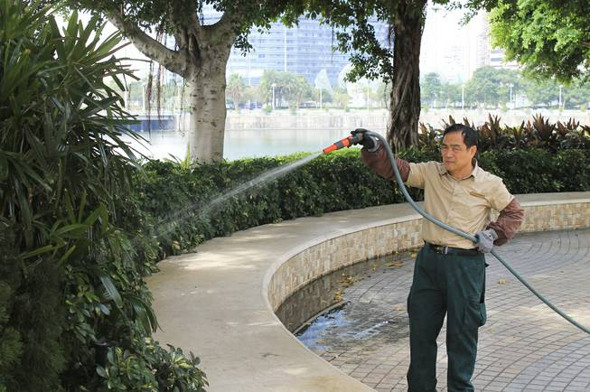 A landscaper tends to the bushes in downtown Macau.