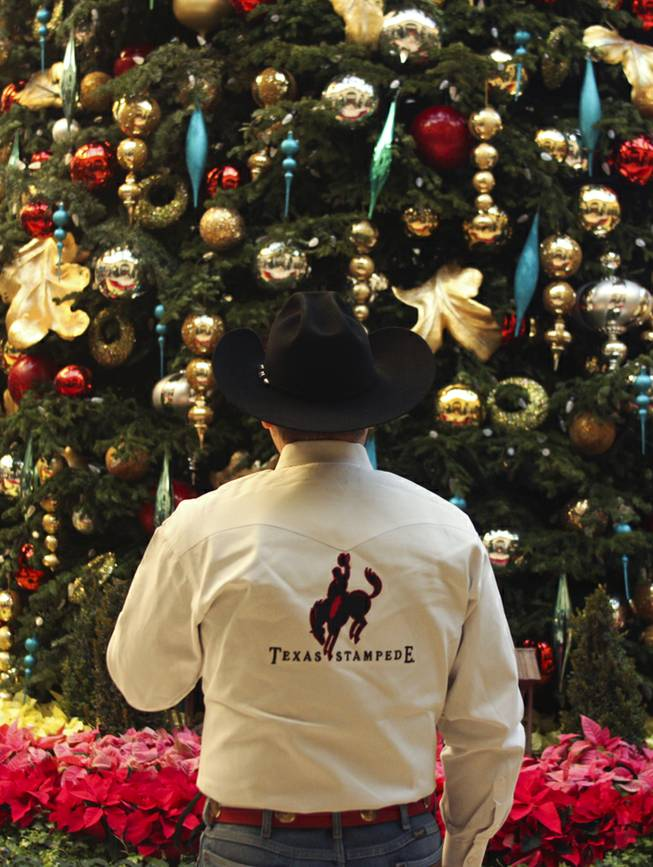 A cowboy admires the 42' Christmas tree at the Bellagio Conservatory prior to the tree lighting ceremony Friday, Dec. 6, 2013.
