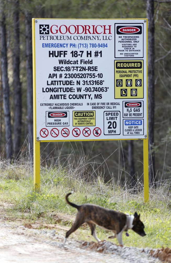 In this Dec. 23, 2013 photograph, a dog walks past the sign indicating a Goodrich Petroleum site in Amite County, Miss.