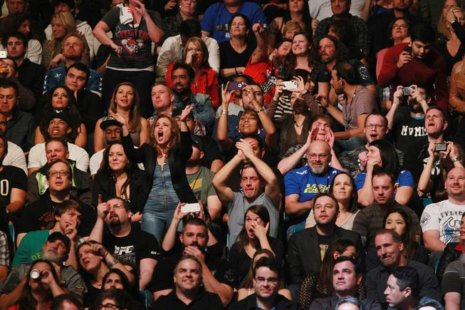 Fans cheer at UFC 168 Saturday, Dec. 28, 2013 at the MGM Grand Garden Arena.