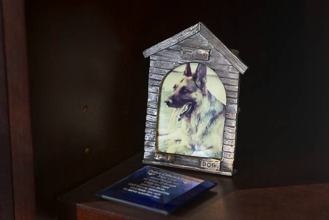 A photo of Danko, Sheriff Doug Gillespie's police dog, is shown on a shelf at his office in Metro Police Headquarters Thursday, Jan. 2, 2014.  Gillespie was a K-9 officer from 1990 to 1993 and adopted  Danko after the dog retired. Danko passed away in 1997.