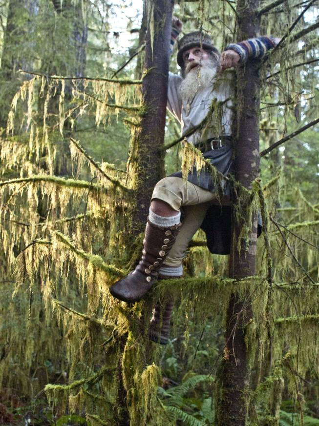 Mick Dodge climbs a pair of trees near  his cabin along the Sol Duc River near Forks, Wash., on January 3, 2014.