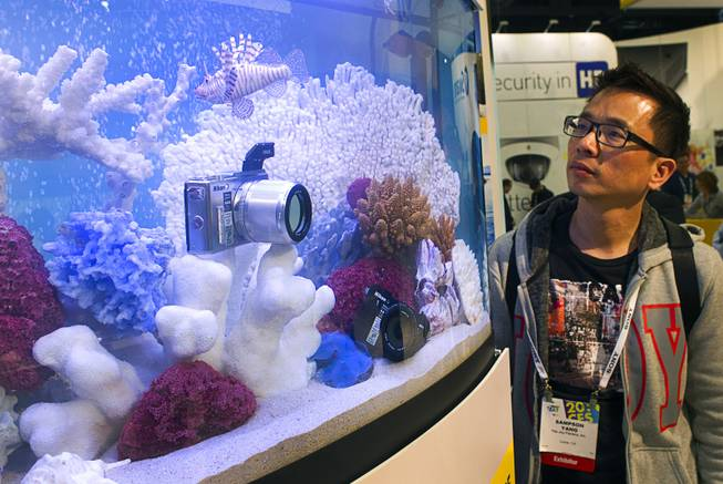 Sampson Yang looks at a waterproof Nikon 1 Aw1 at the Nikon booth during the 2014 International Consumer Electronics Show (CES) in Las Vegas, Tuesday Jan. 7, 2014. The camera retails for $800 and is available in stores.
