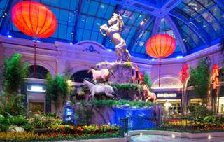 2014 Year of the Horse at Bellagio Conservatory & Botanical Gardens.