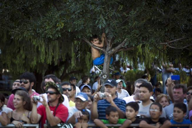 A boy climbs a tree to get a glimpse of vehicles during the symbolic start of the Dakar Rally 2014 in Rosario, Argentina, Saturday, Jan. 4, 2014. The race sets off on Jan. 5, from Rosario in Argentina and finishes in Valparaiso, Chile, on Jan. 18.