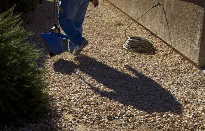 Curtis Murphy of Klean Scoop makes the rounds looking for dog poop in a customer's yard on Wednesday, Jan. 15, 2014.