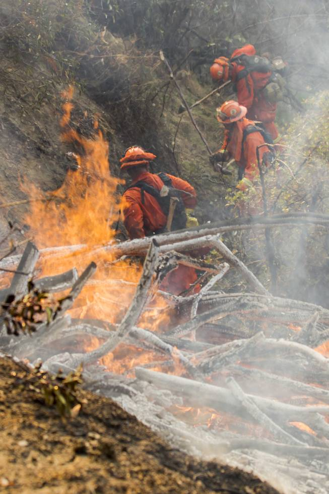 A fire crew works on a fire line as a wildfire burns just north of the San Gabriel Valley community of Glendora, Calif., on Thursday, Jan 16, 2014.