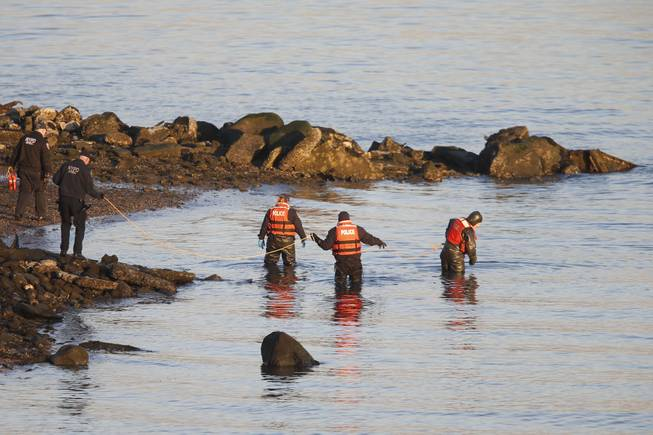 An New York Police Department dive unit continues the search for human remains after an arm and legs were discovered along a rocky shoreline in the Queens borough of New York, Friday, Jan. 17, 2014.