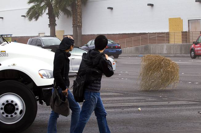 Pedestrians on Sahara Ave. and Las Vegas Blvd bear the windy weather as they cross the street Thursday, Jan. 30, 2014.