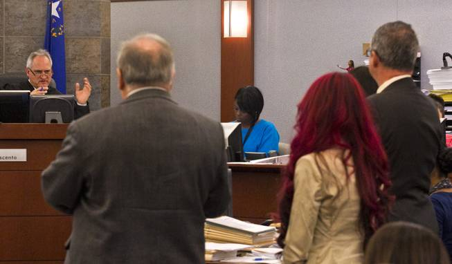 Gloria Lee accused of arson and animal cruelty in connection with a fire at her pet store, Prince and Princess Pet Boutique, is addressed by Judge Joseph Sciscento Wednesday, Feb. 5, 2014.