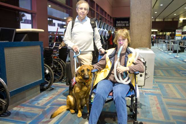 Stuart Graves and his wife, Amy, accompanied by her service dog, Kharma, check in at McCarran International Airport and await their flight to Fort Lauderdale, Fla., Thursday Feb. 5, 2014. Amy, who suffers from muscular dystrophy, was refused a seat on her original flight by Virgin Air because of her ventilator.
