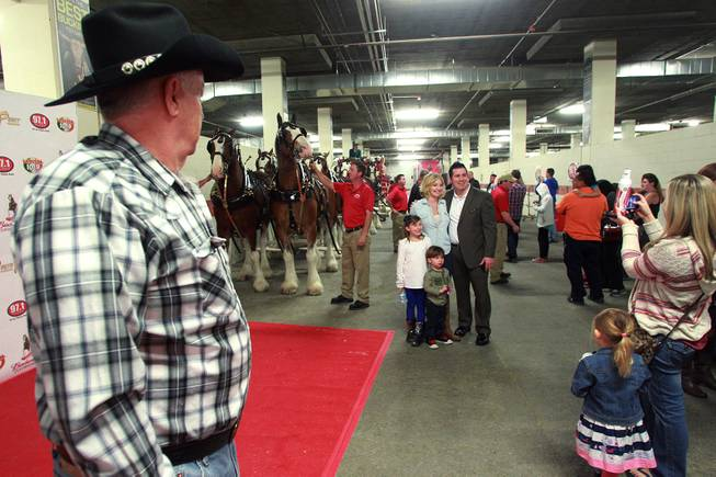 VIP's take photos in the stall area during an appearance of the Budweiser Clydesdales at the South Point Arena Thursday, Feb. 20, 2014.