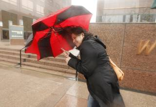 A pedestrian blocks the heavy winds with her umbrella in Los Angeles Friday, Feb. 28, 2014.