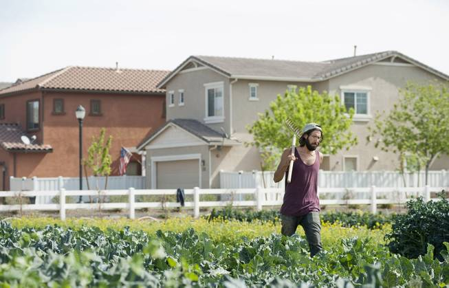 Garrett Gruninger works in a field at Agritopia in Gilbert, Ariz., March 5, 2014. A growing number of residential developments, known as agrihoods, are designed around a working farm instead of a golf course or clubhouse.
