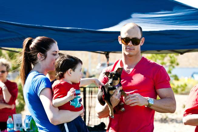 One-year-old Benjamin and his mom, Cassidy Laina, get to know five-month-old Perry held by volunteer John Macejak in the Second Chance Animal Rescue at the City of Henderson's 11 Annual Bark in the Park event at Cornerstone Park Saturday, March 8, 2014.
