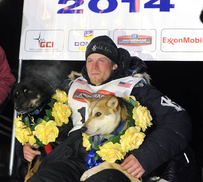 Dallas Seavey sits under the burled arch in Nome, Alaska, after winning the 2014 Iditarod Trail Sled Dog Race on Tuesday, March 11, 2014.