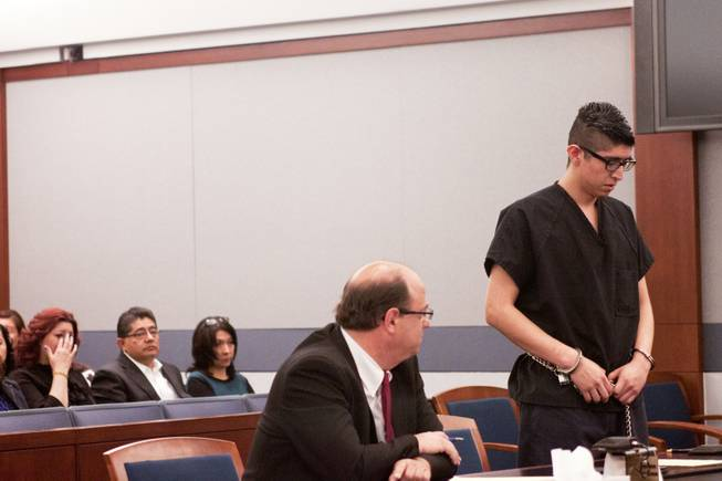 Cristian Diaz apologizes to one of his victims, Anne-Marie Ricci, and his victim's families during his sentencing hearing Monday, March 17, 2014. Diaz, 20, pleaded guilty last year to two counts of driving while under the influence of a controlled substance causing death and substantial bodily harm.