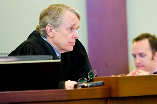 Judge Kenneth Cory addresses a civil hearing between Donald Thompson, co-owner of Prince and Princess Pet Shop LLC, and the Animal Foundation at the Regional Justice Center, Wednesday , March 19, 2014.