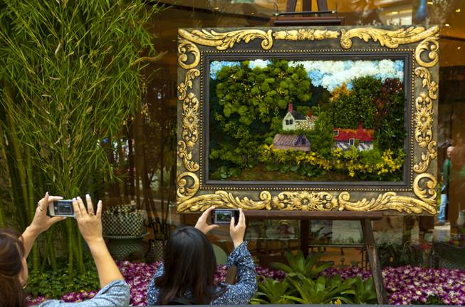 Visitors photograph a plant painting within the new Spring display at the Bellagio Conservatory & Botanical Gardens on Thursday, March 20, 2014.